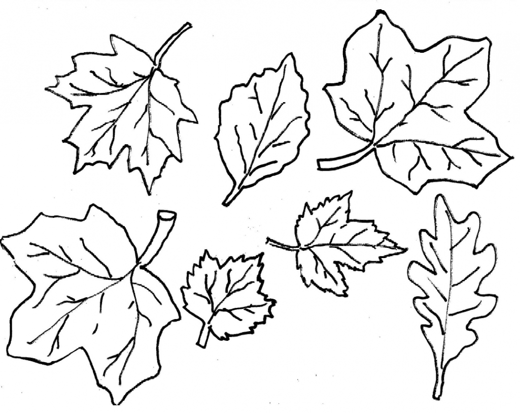 free colouring pictures autumn leaves autumn leaves coloring pages getcoloringpagescom autumn pictures leaves colouring free