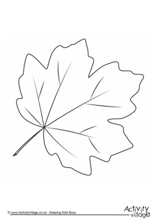 free colouring pictures autumn leaves autumn maple leaves coloring page free printable colouring free leaves autumn pictures