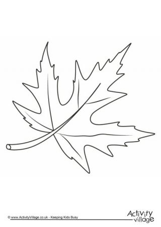 free colouring pictures autumn leaves we39re going on a leaf hunt follow up activities leaves autumn free pictures colouring