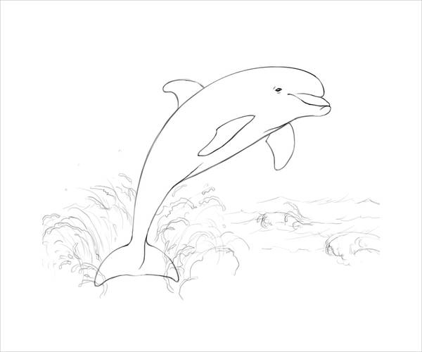 free dolphin coloring pages 8 dolphin coloring pages jpg ai illustrator download dolphin free pages coloring