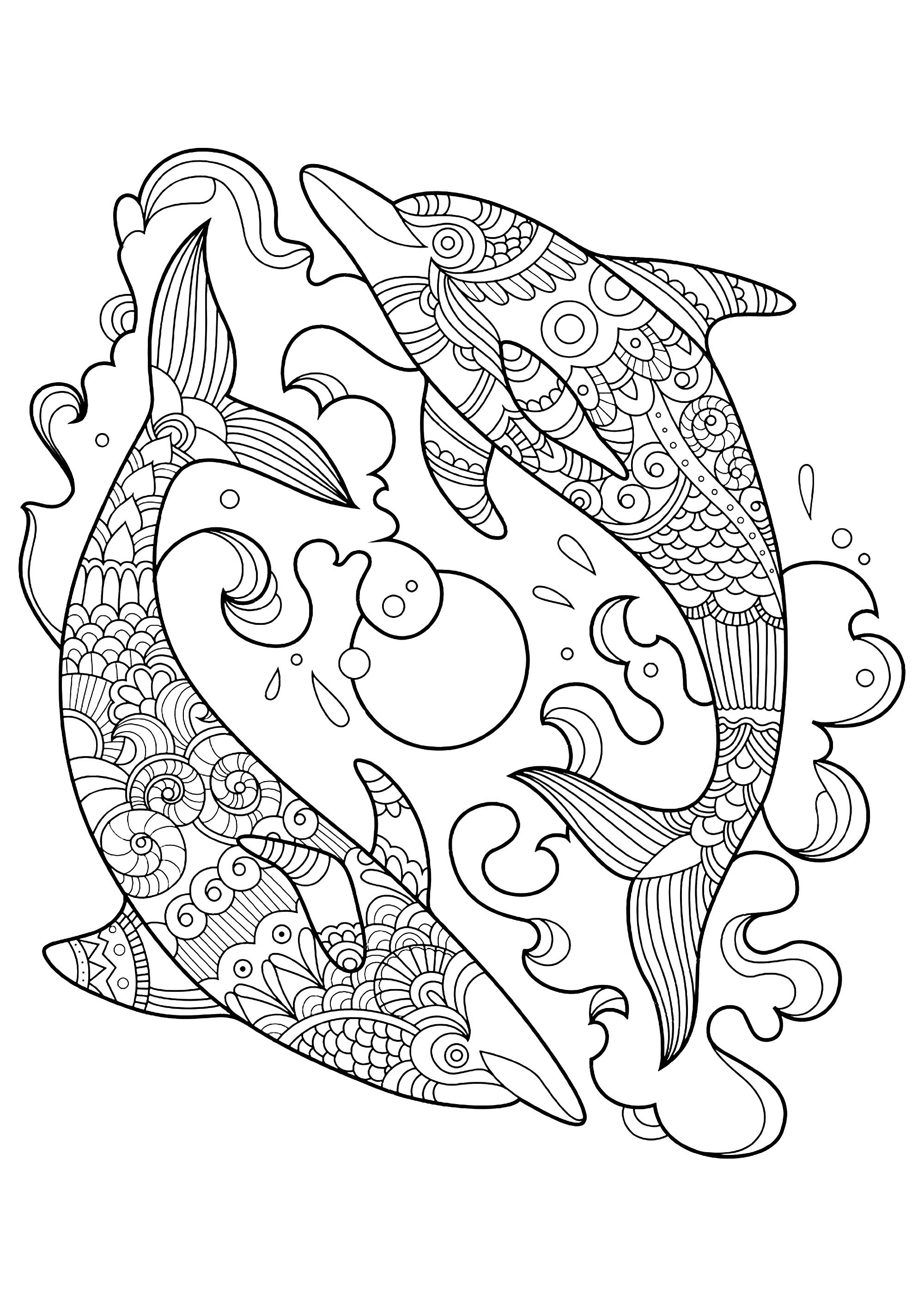 free dolphin coloring pages dolphins to color for children dolphins kids coloring pages coloring pages free dolphin
