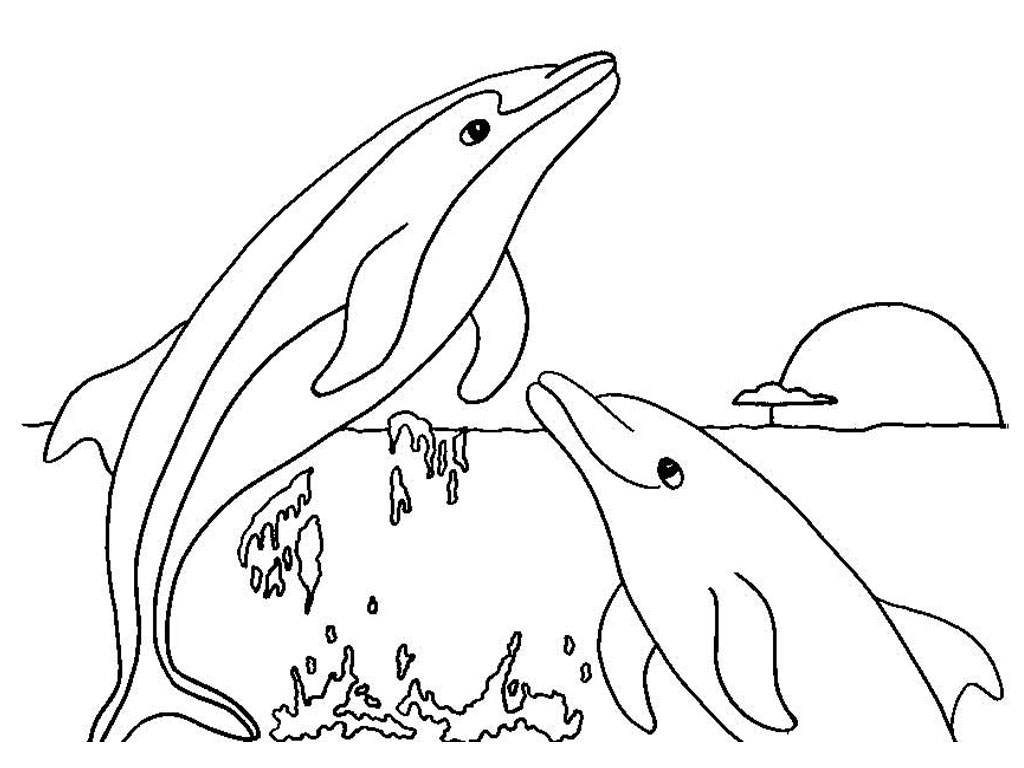 free dolphin coloring pages free printable dolphin coloring pages for kids coloring pages free dolphin
