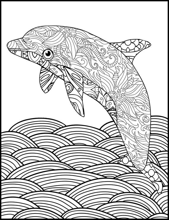 free dolphin coloring pages printable coloring page adult coloring page dolphin etsy coloring free pages dolphin