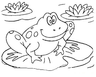 free frog coloring pages free printable frog coloring pages for kids cool2bkids free pages frog coloring