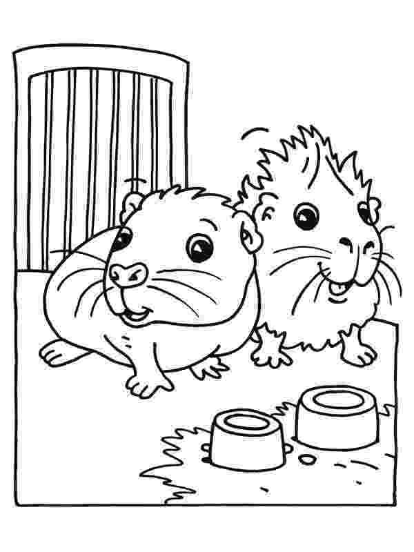 free guinea pig coloring pages guinea pig coloring pages mom and baby free printable pages pig guinea free coloring