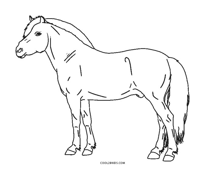 free horse coloring pages printable coloring pages of horses printable free coloring sheets coloring printable free horse pages