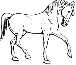 free horse coloring pages printable free printable horse coloring pages for kids cool2bkids free pages horse printable coloring