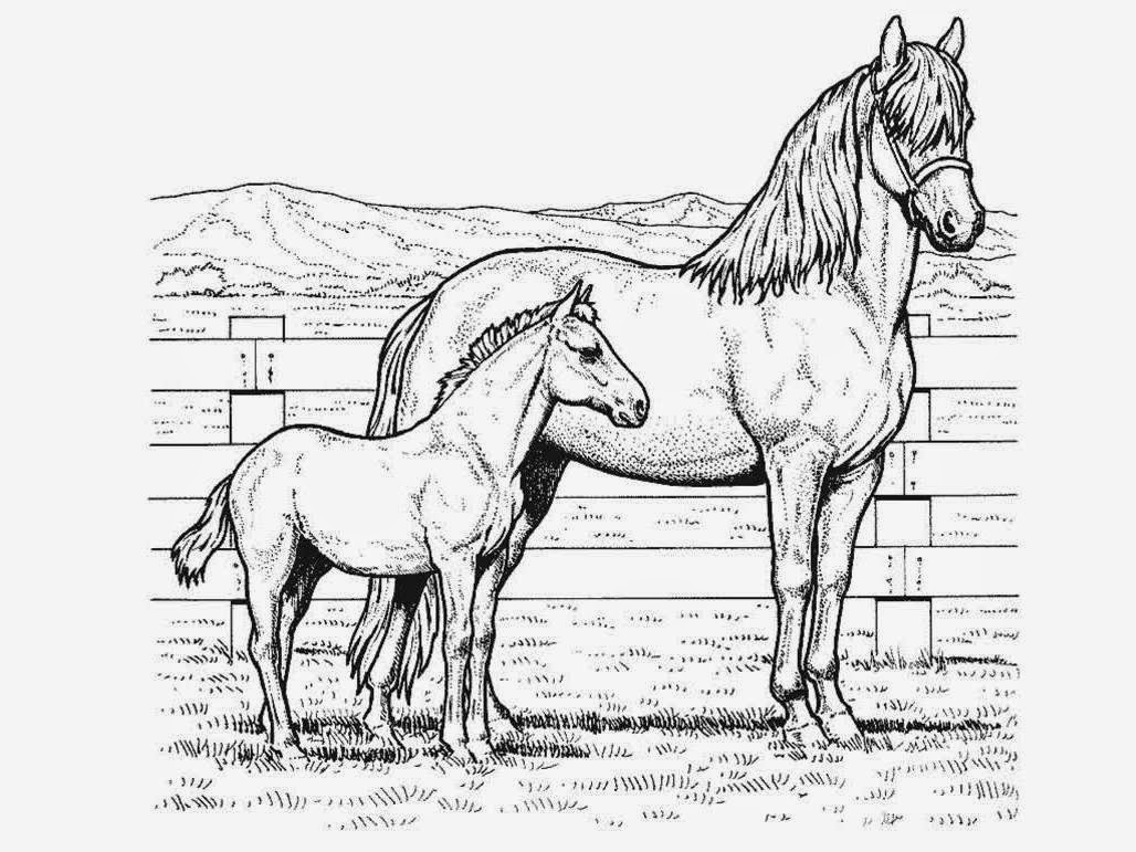 free horse coloring pictures realistic horse coloring pages getcoloringpagescom horse coloring free pictures