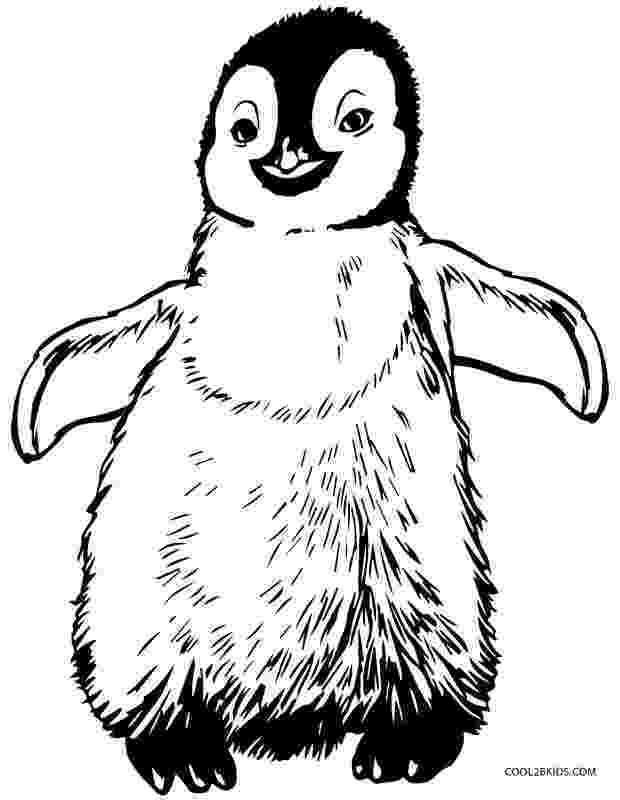 free penguin coloring pages colours drawing wallpaper cute baby penguin colour coloring penguin pages free