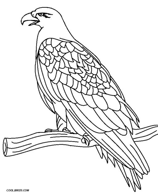 free printable coloring pages eagle eagle coloring pages getcoloringpagescom coloring eagle printable pages free