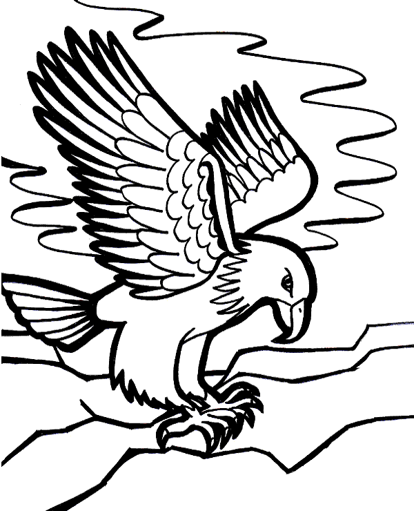 free printable coloring pages eagle free printable eagle coloring pages for kids free coloring pages printable eagle