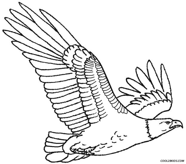 free printable coloring pages eagle printable eagle coloring pages for kids cool2bkids pages coloring free printable eagle
