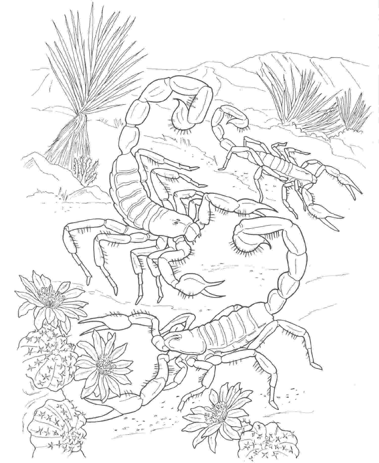 free printable coloring pages of desert animals desert coloring pages best coloring pages for kids coloring printable animals of pages free desert