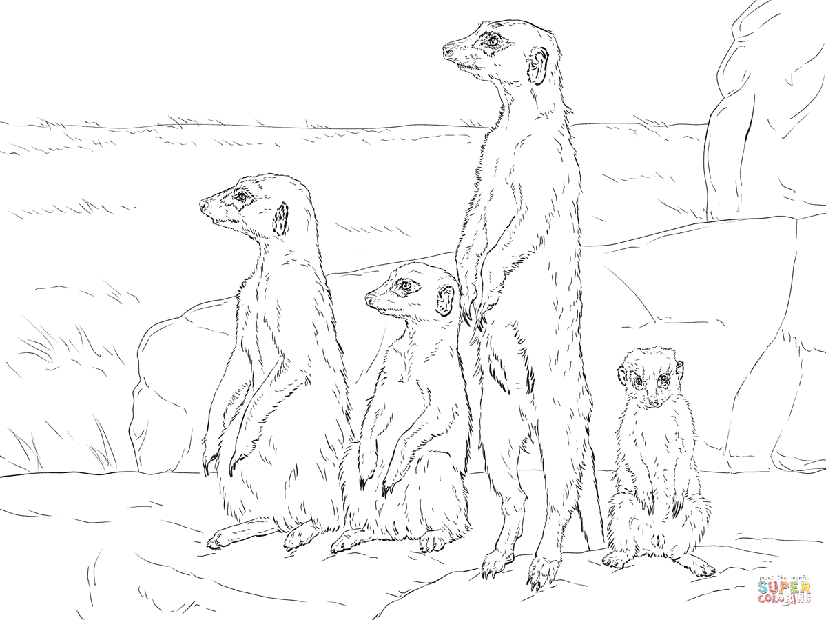 free printable coloring pages of desert animals free printable desert coloring pages sketch coloring page coloring free pages printable of desert animals