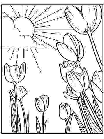 free printable coloring pictures of spring printable spring coloring pages free of coloring spring pictures printable