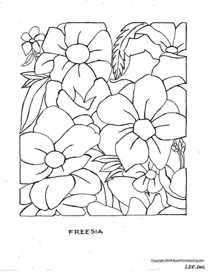 free printable flowers to color free printable flower coloring pages for kids best printable to free color flowers