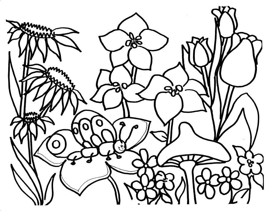garden coloring pages printable flower garden coloring pages to download and print for free garden coloring pages printable 1 1