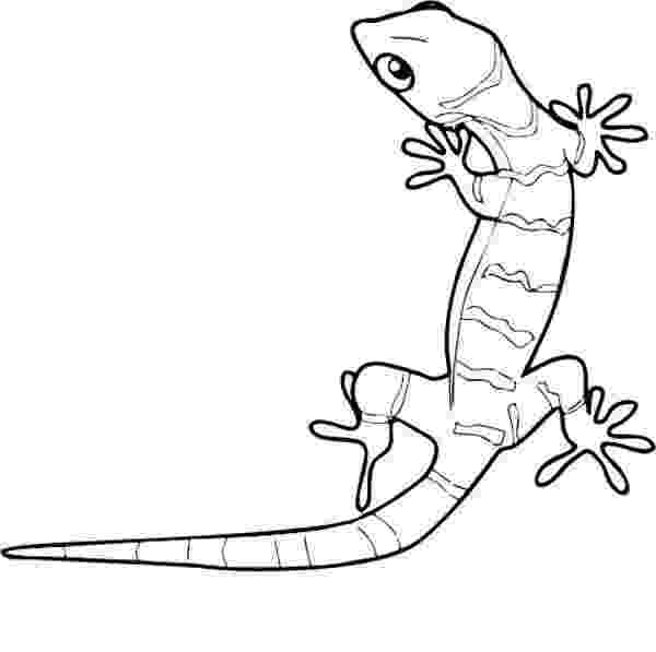 gecko lizard coloring pages top 10 free printable lizard coloring pages online lizard coloring pages gecko