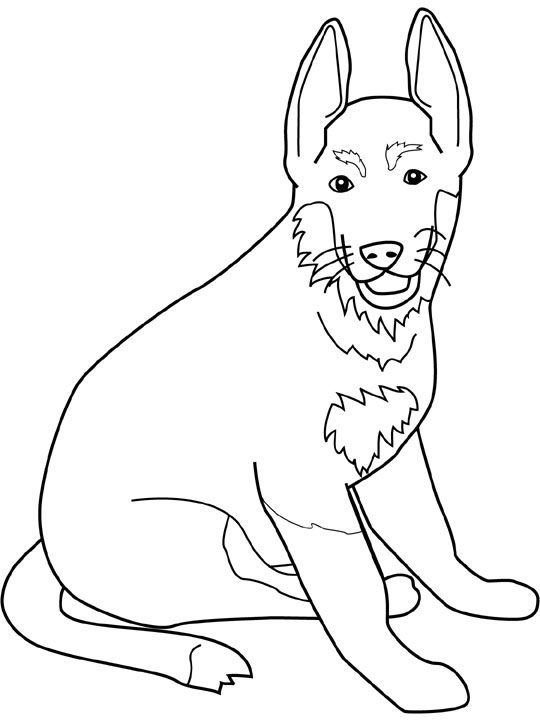 german shepherd pictures to print dog color pages printable dogs coloring pages german pictures german shepherd to print