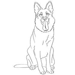 german shepherd pictures to print free printable dogs and puppies coloring pages for kids pictures to shepherd print german