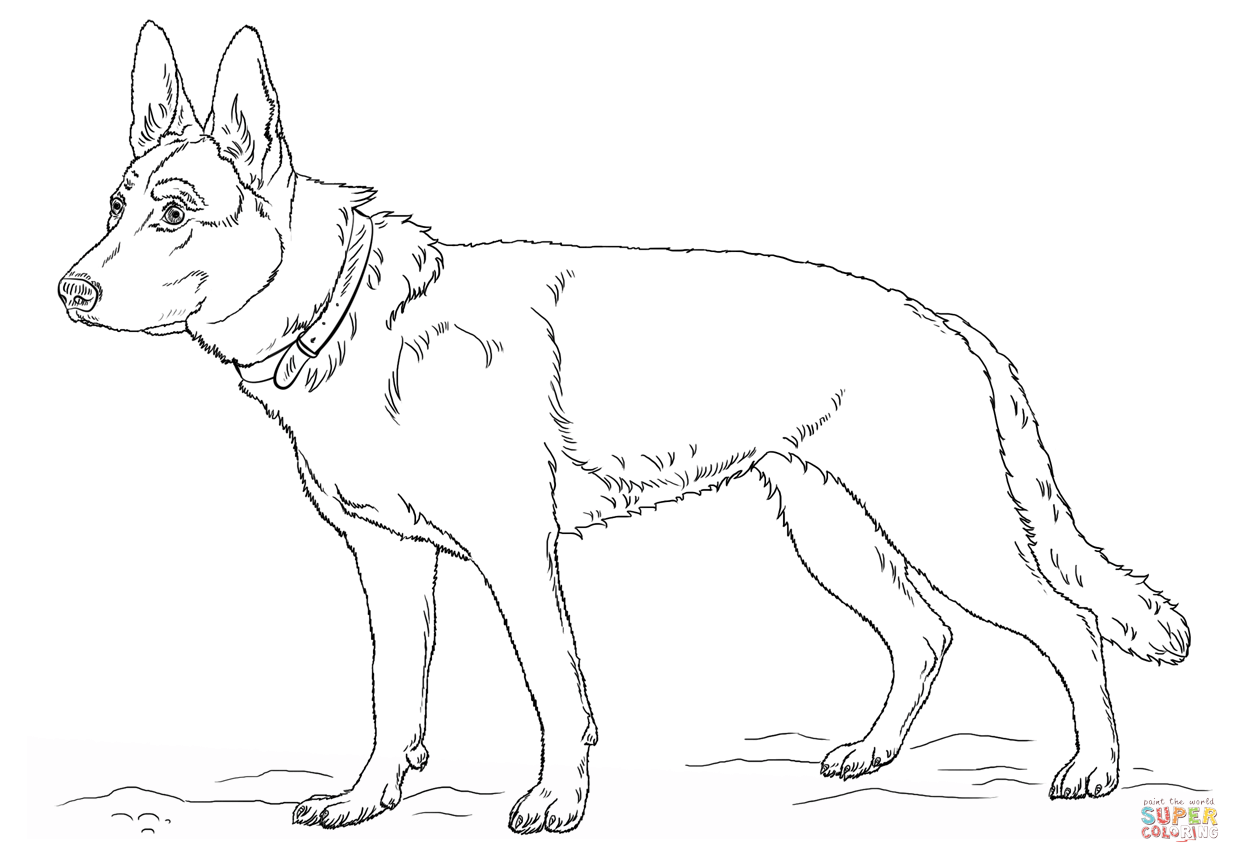 german shepherd pictures to print german shepherd coloring pages to download and print for free german shepherd print to pictures