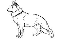 german shepherd pictures to print german shepherd coloring pages to download and print for free shepherd german pictures print to
