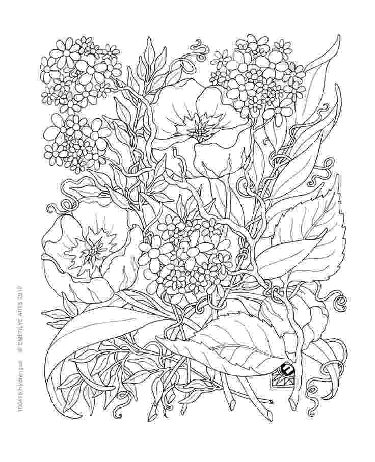 google colouring book for grown up 624 best images about coloring pages portraits for grown google colouring book grown up for
