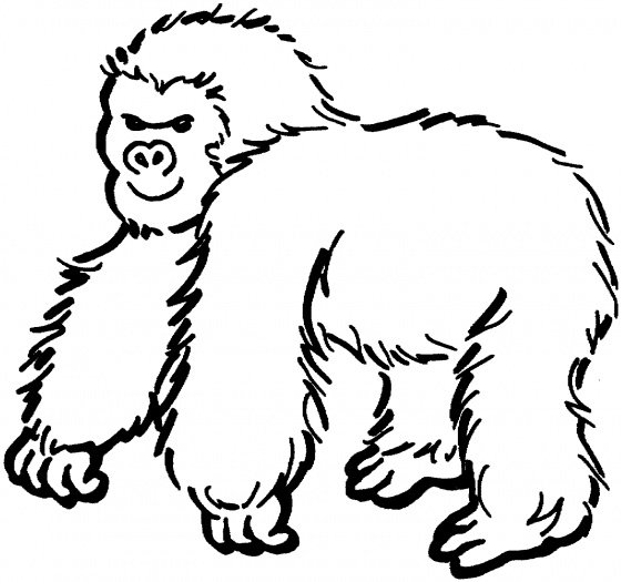 gorilla coloring pages free gorilla coloring pages gorilla coloring pages 1 1