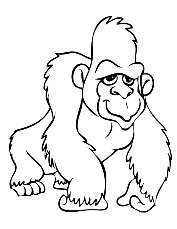 gorilla coloring pages gorilla coloring page sketch coloring page coloring gorilla pages