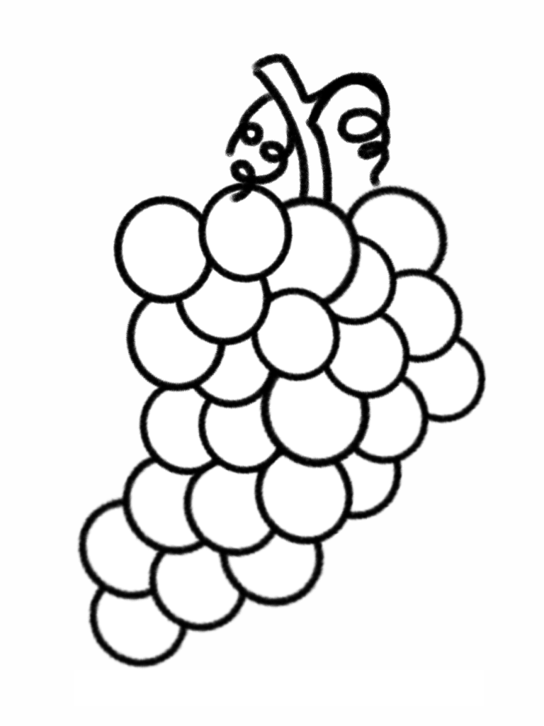 grapes pictures for colouring bunch of grapes coloring page to use as an embroidery colouring for grapes pictures