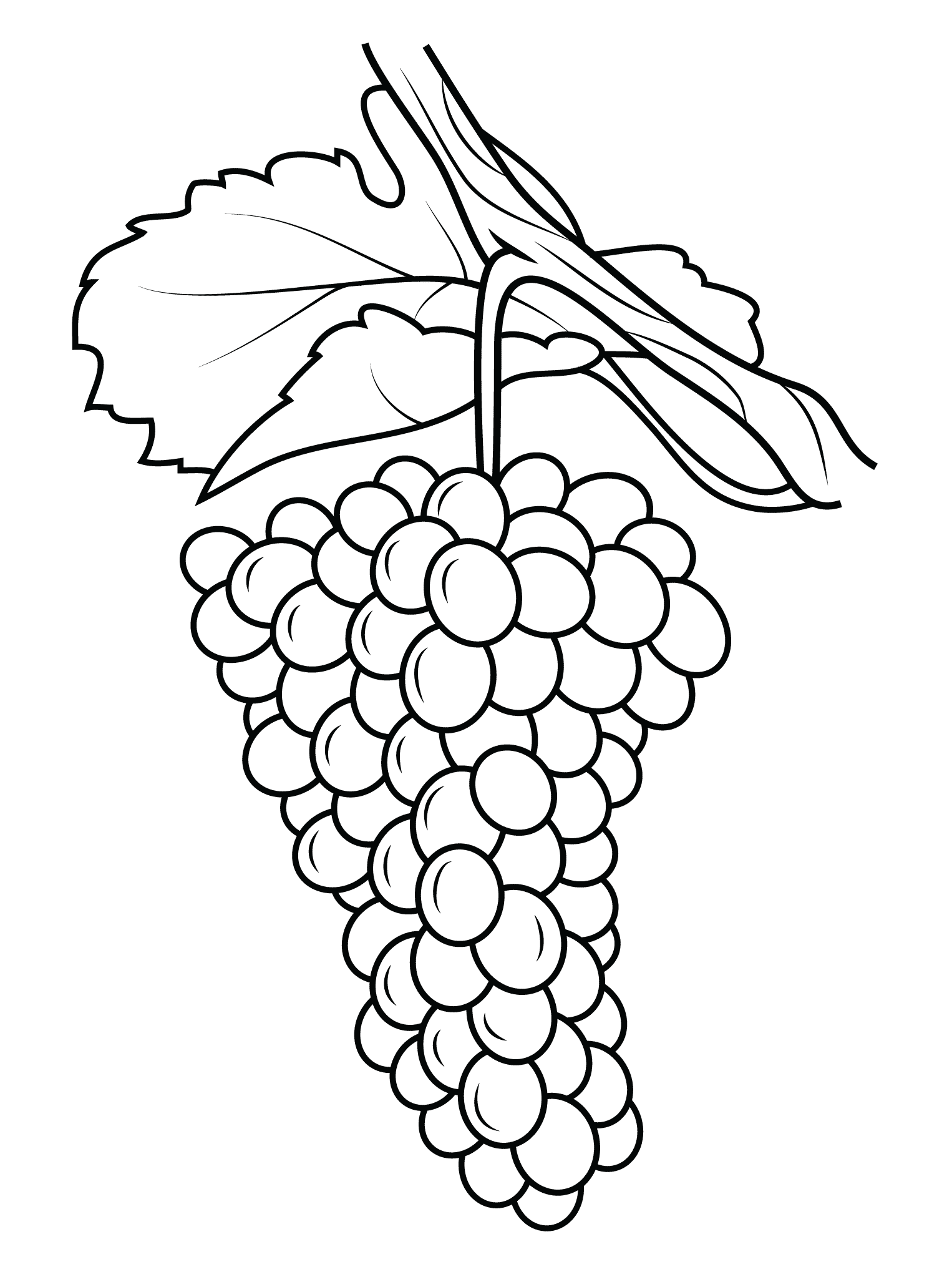 grapes pictures for colouring delicious fruit grapes coloring pages color luna grapes pictures for colouring