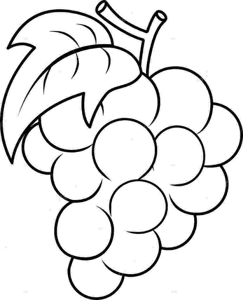 grapes pictures for colouring food and drink colouring pages grapes for pictures colouring