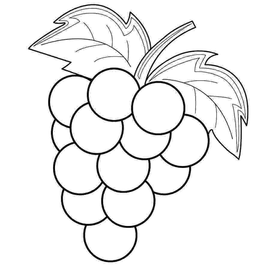 grapes pictures for colouring grapes coloring pages to download and print for free grapes for colouring pictures