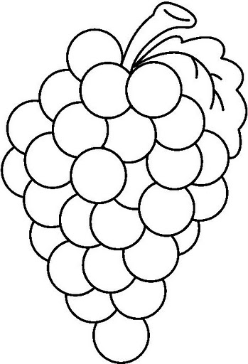 grapes to color free grapes coloring pages fantasy coloring pages color grapes to