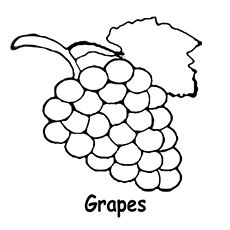 grapes to color free grapes coloring pages grapes color to