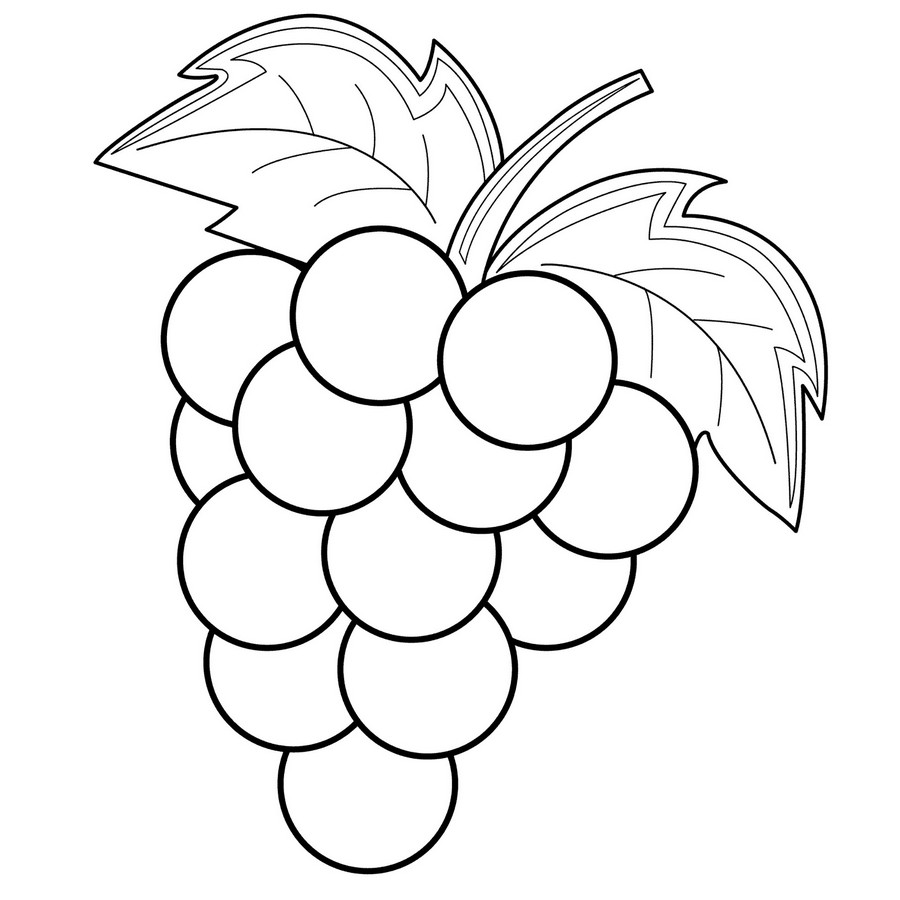 grapes to color grapes coloring pages to download and print for free to color grapes