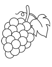 grapes to color top 25 free printable lovely grapes coloring pages online grapes to color