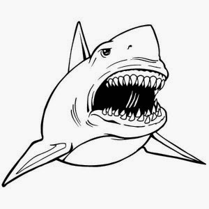 great white shark pictures to color shark week great pictures white color shark to