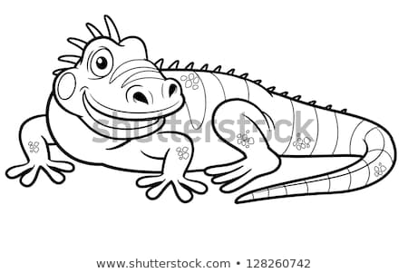 green iguana coloring page green iguana coloring pages coloring pages green coloring page iguana