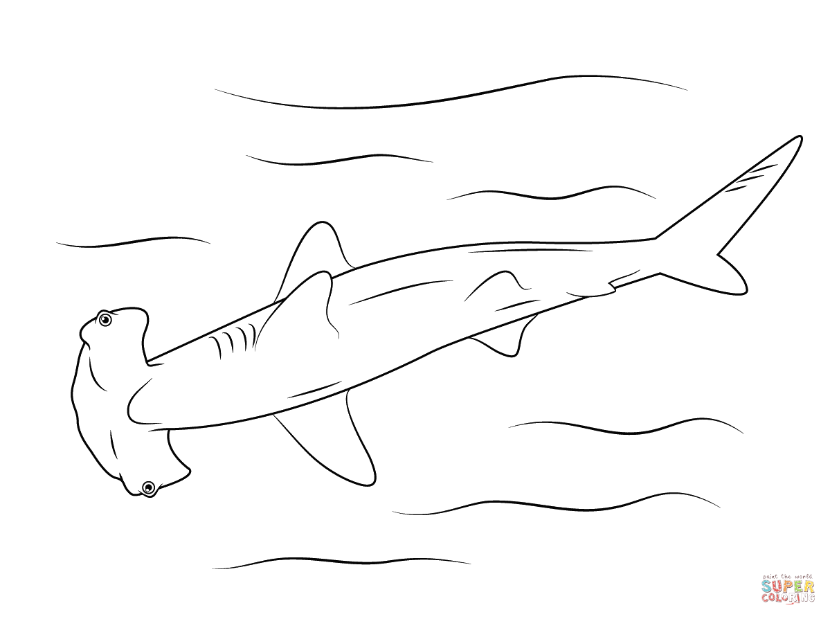 hammerhead shark coloring pages to print hammerhead shark cut out pattern clipart best pages hammerhead shark print coloring to