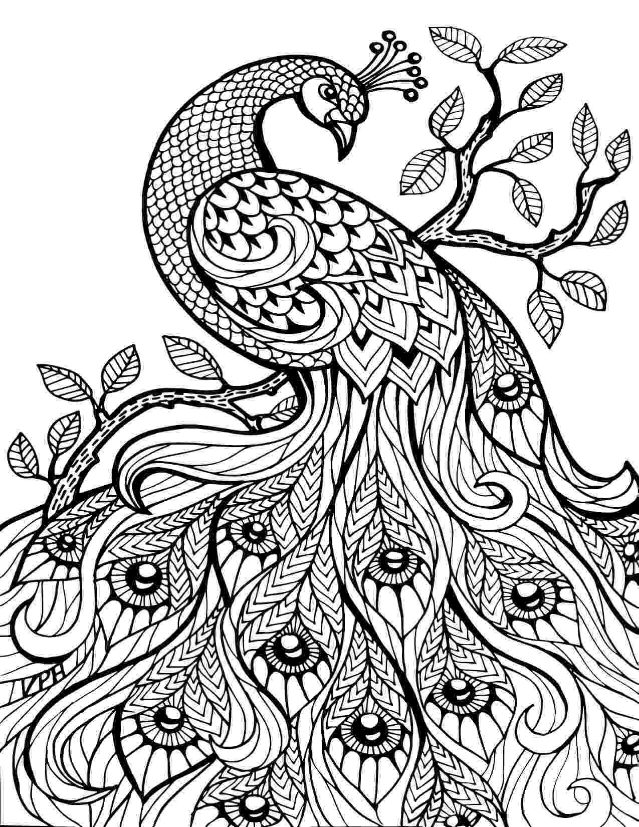 hard animal coloring pages coloring pages for adults difficult animals 57 coloring hard animal coloring pages