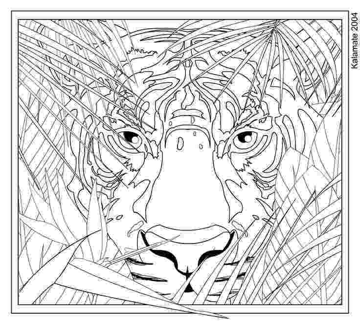 hard animal coloring pages hard animal pattern coloring pages getcoloringpagescom pages animal hard coloring