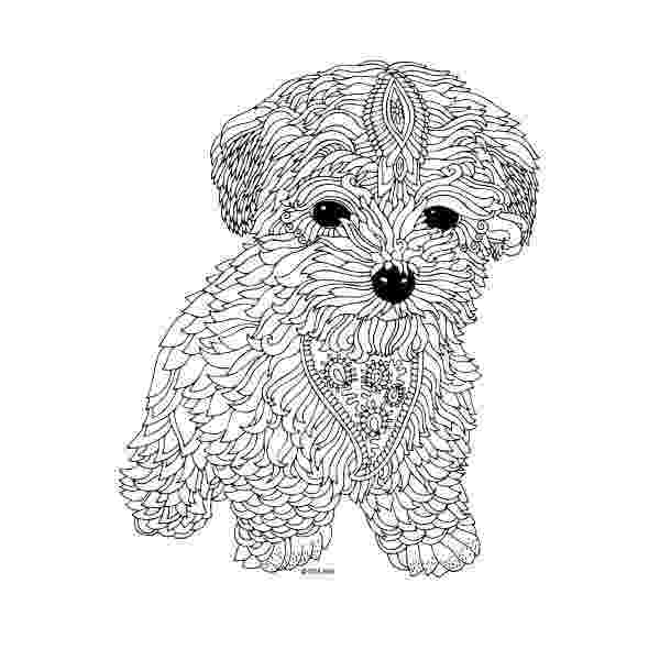 hard animal coloring pages hard coloring pages for adults best coloring pages for kids animal pages coloring hard