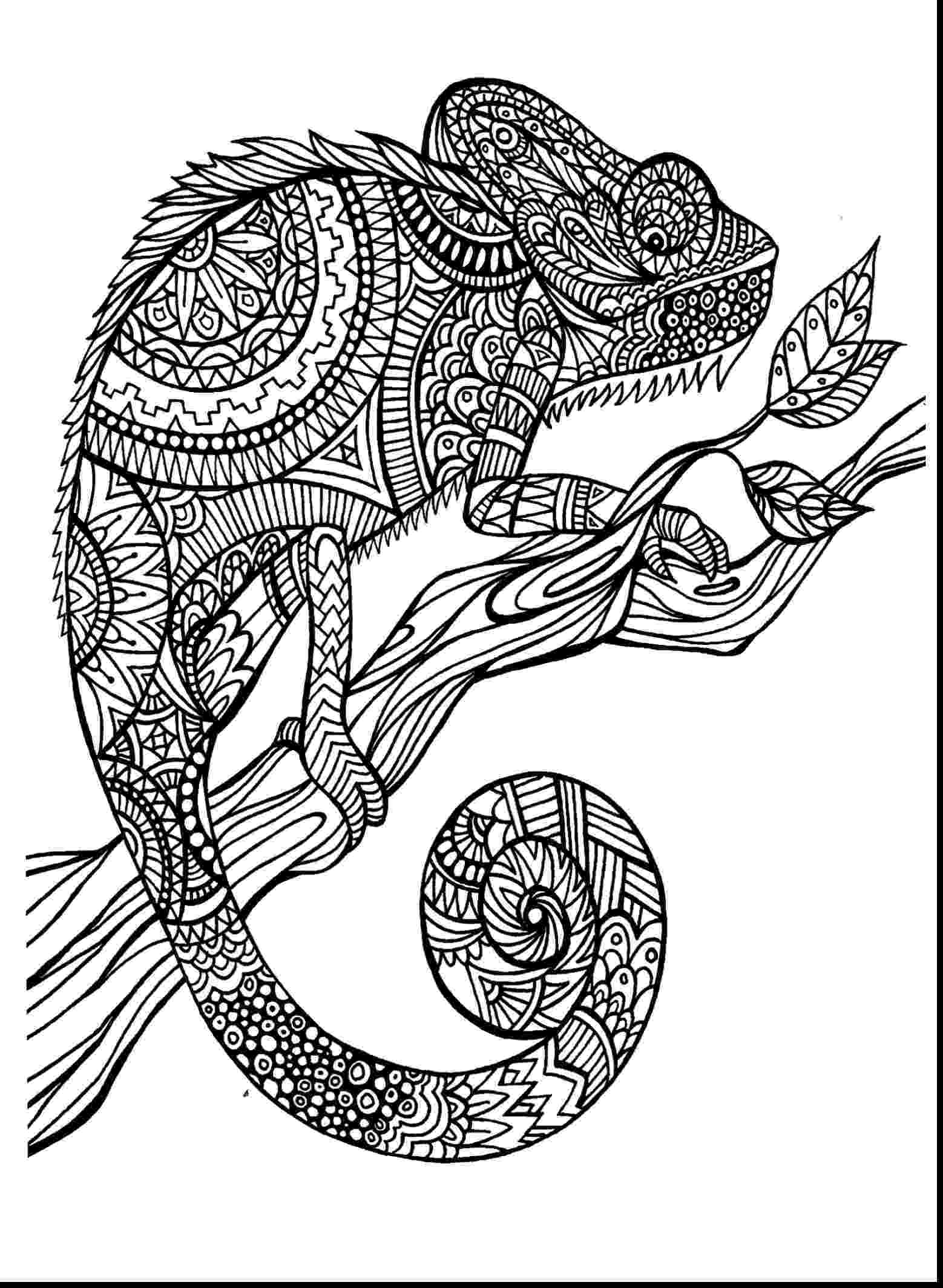 hard animal coloring pages hard coloring pages of animals wallpaper hd muscle car pages coloring animal hard