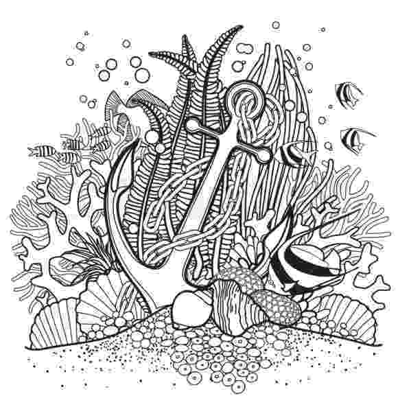 hard fish coloring pages 3 hard coloring pages of dragons dragon coloring pages fish coloring hard pages