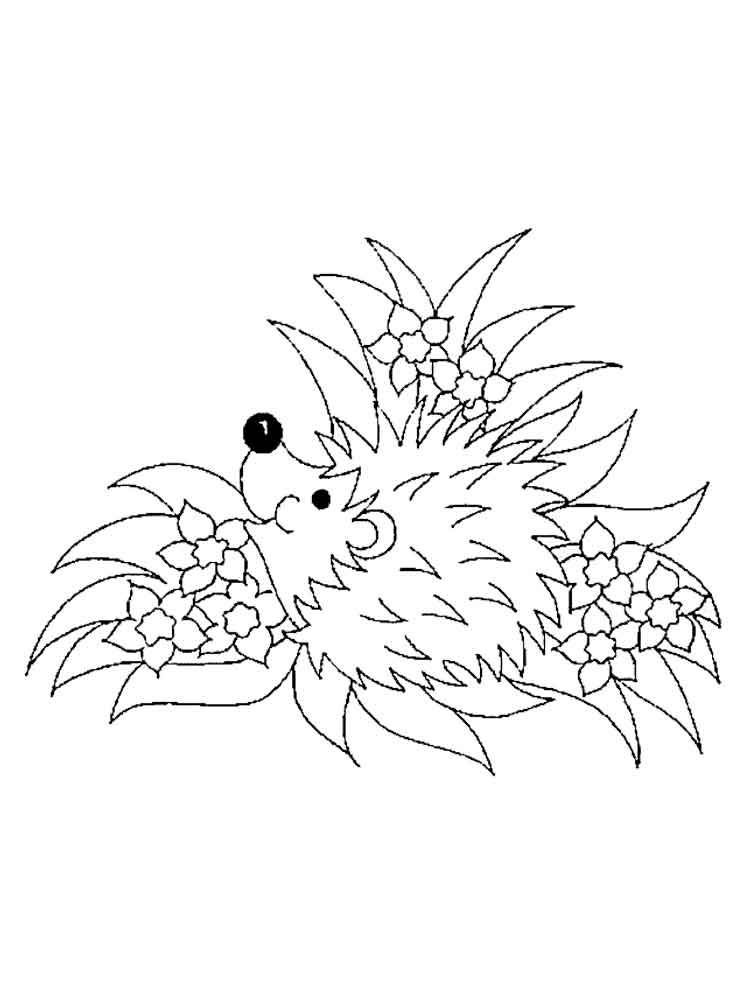 hedgehog coloring pages printable 226 best images about autunno on pinterest coloring printable pages hedgehog