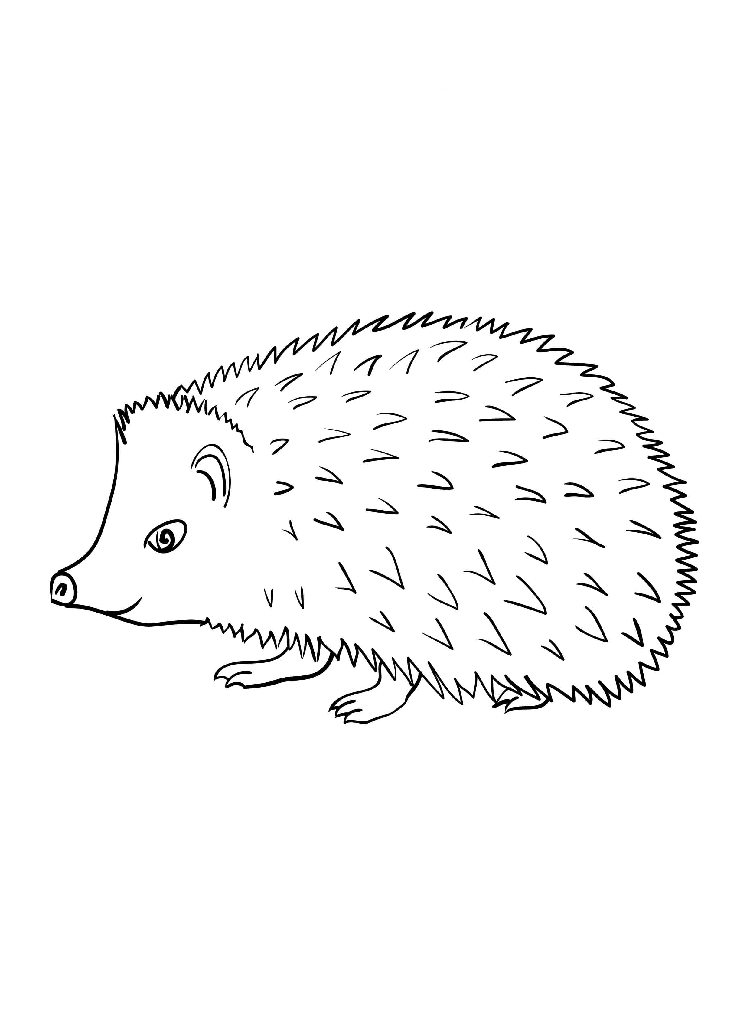 hedgehog coloring pages printable hedgehog coloring picture coloring pages hedgehog pages printable coloring hedgehog