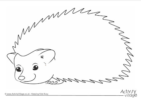 hedgehog picture to colour free printable hedgehog colouring pages for kids to hedgehog picture colour