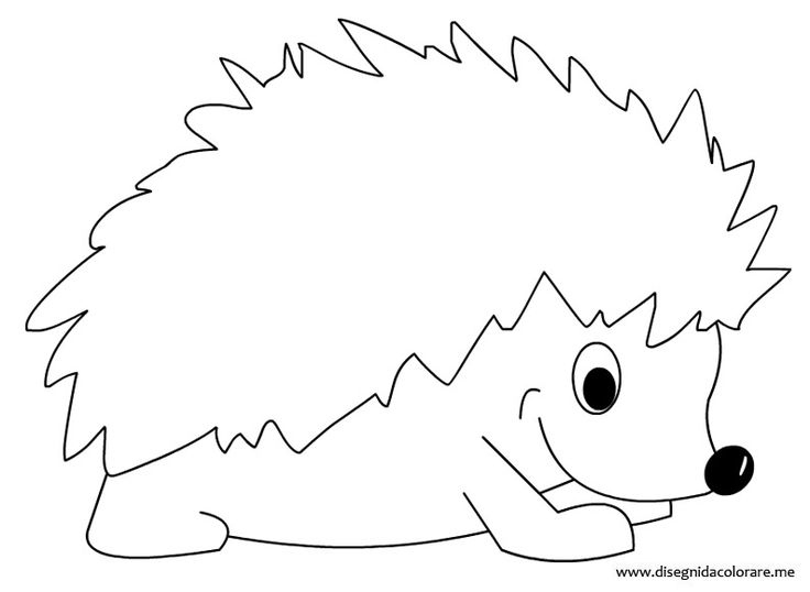 hedgehog picture to colour hedgehog coloring page art starts for kids colour to picture hedgehog