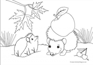 hedgehog picture to colour hedgehog coloring pages to download and print for free to picture hedgehog colour